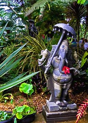 Whatever the Weather (musicmuse_ca) Tags: two 15fav elephant rain statue 510fav umbrella hawaii ganesha interestingness god kauai hindu hinduism deity scultpure lordganesha hindumonastery interestingness315 i500 kauaiaadheenam shaivasiddhanta