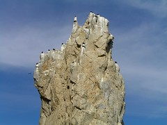 Mexico - Cabo San Lucas (Chris&Steve) Tags: northamerica mexico cabo cruise cruising bird birds rockformations rock rocks cliffs cliff hollandamerica cabosanlucas hal sea ship hollandamericaline 10millionphotos cruiseship p100 v100i shipping