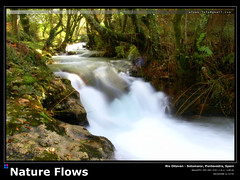 Nature Flows