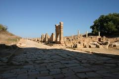 Cardo, Leptis Magna, Libya (Mike Gadd) Tags: libya leptismagna decumanus