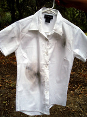 Clothing drive-by by Esther17 on flickr; a white business shirt on a ahnger, dirty, torn and stained.