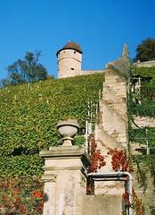 Schloss Kaltenstein (alf sigaro) Tags: germany vineyard vineyards vaihingen revue400se weinberg badenwürttemberg weinberge vaihingenanderenz schlosskaltenstein revue400se25