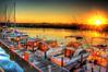 Boat Row (worldwidewandering) Tags: ocean usa sun beach america sunrise boats saturated rocks tampabay florida deleteme10 indian united 2006 indianrocksbeach nikond50 states hdr photomatix 5xp hamlinslanding worldwidewandering