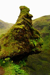 Green Moss - Skgafoss -  Skgar - Iceland ({ Planet Adventure }) Tags: 20d canon landscape ilovenature island eos iceland islandia cool holidays flickr explorer ab lindo backpacking bleak iwasthere tagging canoneos allrightsreserved beautifulscenery havingfun inhospitable onflickr cooloutdoorpics visittheworld ilovethisplace fantastica travelphotos placesilove traveltheworld travelphotographs canonphotography alwaysbecapturing worldtraveller planetadventure spectacularlandscapes lovephotography specland beautyissimple greatplace theworlthroughmyeyes icelandiclandscape flickriscool loveyourphotos theworldthroughmylenses greatcaptures shotingtheworld by{planetadventure} byalessandrobehling icanon icancanon canonrocks selftaughtphotographer phographyisart travellingisfun laterallycool stunningscenery inhospitableplace icelandiclandscapeimage awesomelandscape beautyfullandscape interestingplace visitthisplace alliceland justiceland greaticeland visiticeland 20060927 {planetadventure} copyright20002008alessandroabehling