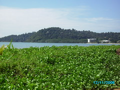 My favourite view!! (Crystalzzz) Tags: green beach island 7 retreat leaders selangor outpost vast