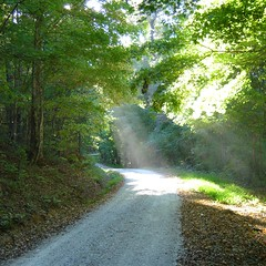Light Shines Through (TNEmily) Tags: park light nature path tennessee trail standingstone overtoncounty