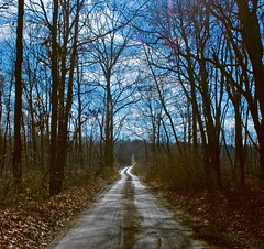The road to the Lake (Kathy~) Tags: road blue house lake tree chelsea michigan cottage explore dirt cw interestingness24 northlakenovember kathy~ photofaceoffwinner pfogold challengew herowinner msh01105 msh0110