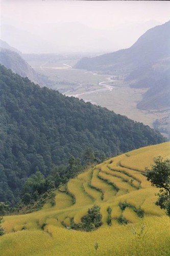 358-Trek-Valley