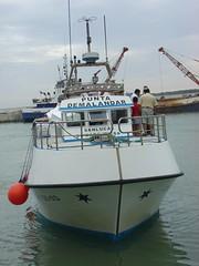 aDSC09889 (Iigo Jimnez) Tags: puerto port bonanza pesca fish sanlucar sanlucardebarrameda cadiz andalucia andalusia