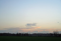 Early Evening (dModer101) Tags: autumn nature evening countryside warwickshire coombeabbey