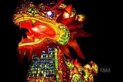 2016_1209-dmc_lantern_festival_02 (Dennis M Chua) Tags: a7ii columbus ohio sony usa asian culture holiday slr50f11fe nightphotography