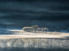 Ice Magic (PSHiggins) Tags: crafnant lake llyn ice icy mist trees