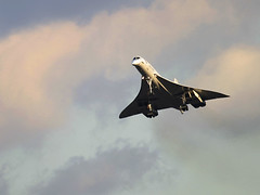 Concorde landing at London Heathrow Airport. (Greg Bajor) Tags: 2003 london airplane airport october heathrow flight jet landing final commercial concorde british 102 24 airways aerospace supersonic 25faves aplusphoto aerospatialebritish birdlikeimages gregbajor