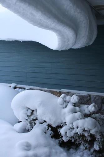 blizzard 012