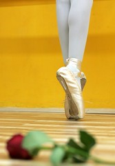Ballet class (ido1) Tags: red ballet rose yellow point israel shoham