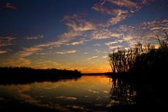 Clouds In The Water Ⅺ (mightyquinninwky) Tags: trees sky water clouds reflections evening december kentucky lexingtonky richmondroad fayettecounty centralkentucky ellserlielake