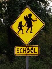 Chrysalis School Crossing