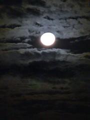 好浪漫的月亮呀