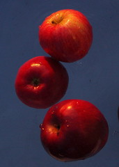 (Fer Gregory) Tags: pictures camera city blue red milan art apple frutas fruits fruit mxico mexicana de mexico interestingness interesting icons flickr foto photographer with shot artistic manzana photos background sony creative taken 8 cybershot myspace clip fruta mexican fotos fernando mexique tres apples gregory ccd 80 f828 mexicano sets camara con recent dsc groups megapixel fotografo tomadas manzanas hi5 sonydscf828 relevant freg dscf828 artisticas megapixeles abigfave fernandogregory fr3g flickrphotoaward cybershotdscf828 reg