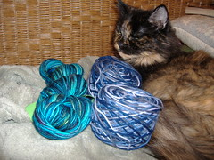 Desdemona And The Sock Yarn.