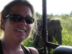 Sarahs elephant2