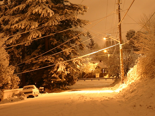 Photo of Snowfall in Seattle