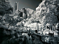 Infrared@Hong Kong Park (hk_traveller) Tags: china park trip travel trees vacation bw white black tree canon wow ir hongkong photo interestingness interesting asia flickr traveller hong kong explore turbo 25 infrared g1  top100 top10  topten 1000views canong1 093 douban  top500 i500 view1000 turbophoto