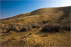 Desert Colors (Shaahin Madani) Tags: landscape desert iran natural kashan maranjab