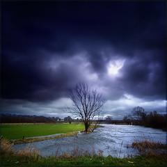 prachtige foto van Hans van de Vorst