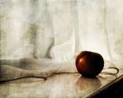 (catherine buca) Tags: light shadow red painterly texture apple window ricohgrd utatafeature utata:project=upfaves