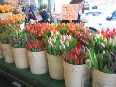 Tulips in the Seattle Public Market (librarywebchic) Tags: seattle publicmarket