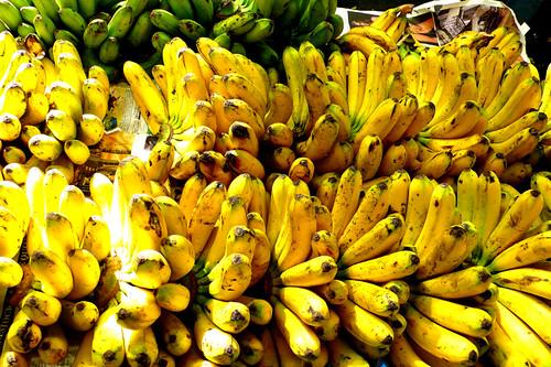 salcedo bananas