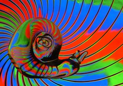 Blcklight Snail (KvonK) Tags: creative blacklight
