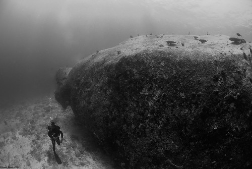 Stone City underwater