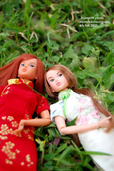 dolly day 18 - the cheongsam girls (v) (*hui-mei-98) Tags: nikon singapore handmade moms cheongsam momoko tianchi d40 petworks mingjian 03ssor 04sscc
