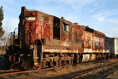 The Cadillac of Diesel Locomotives (SP8254) Tags: california railroad abandoned train rust diesel decay rail sp locomotive sonomacounty sonomacountyca southernpacific freighttrain sd9 southernpacificrailroad sp4436