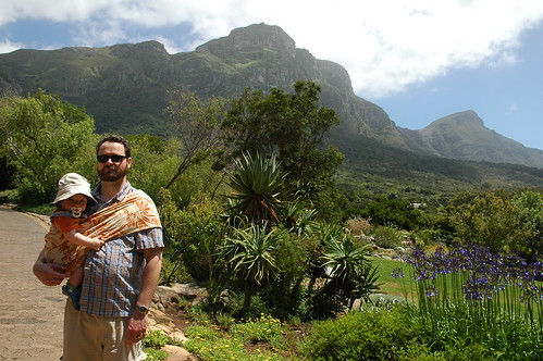 Swee'pea at Kirstenbosch II