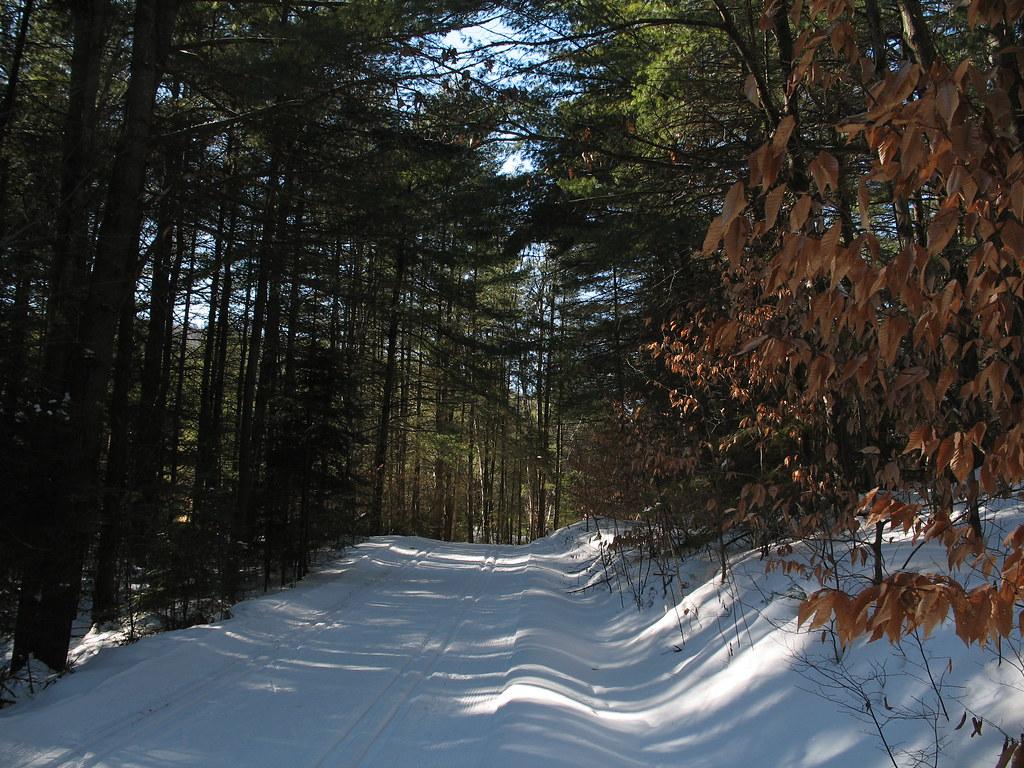 Lusk trail