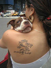 Metaphysics (AnomalousNYC) Tags: nyc portrait dog newyork girl tattoo puppy back memorial sad manhattan unionsquare anomalous anomalousnyc