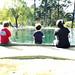 waller park