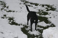snow-4143 (liltza) Tags: ayres