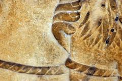 Piedras Negras Estella 12, detail