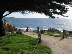 Carmel, California (kennye_788) Tags: california beach water beauty sunshine monterey blueskies naturesfinest newphotos
