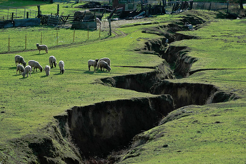 Fault line in New Zealand