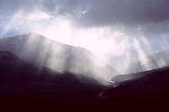 Cool Light - Palmer Lake - by Sahtu Wildlife
