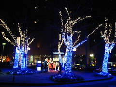 Christmas lights (jasonkrw) Tags: christmas blue trees light japan lights christmaslights hiroshima