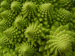 Broccoli (Eulinx) Tags: green vegetables pattern broccoli fractal romanesco orto ortaggi