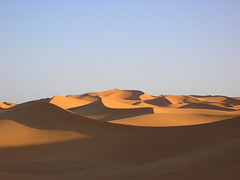 marokko, erg chebbi (atsjebosma) Tags: blue shadow sky colour sahara yellow sunrise desert dunes morocco afrika marokko merzouga ergchebbi goldenphotographer wowiekazowie