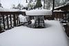 Deck Full of Snow