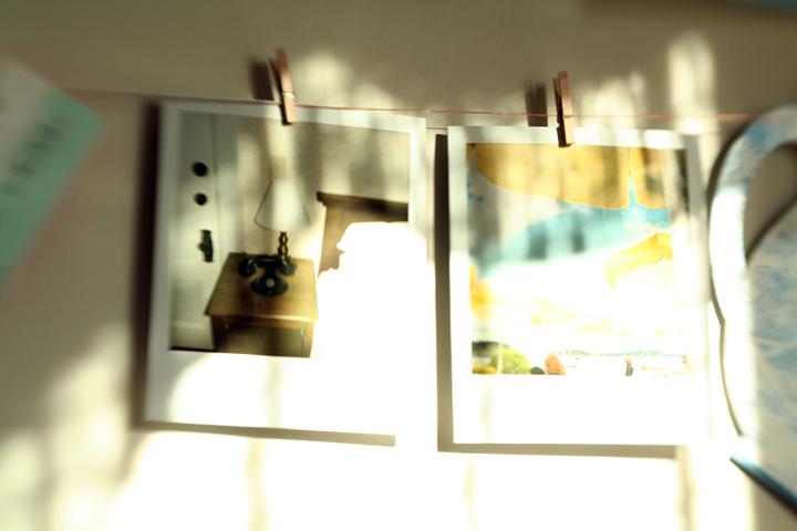 Lensbaby Polaroids